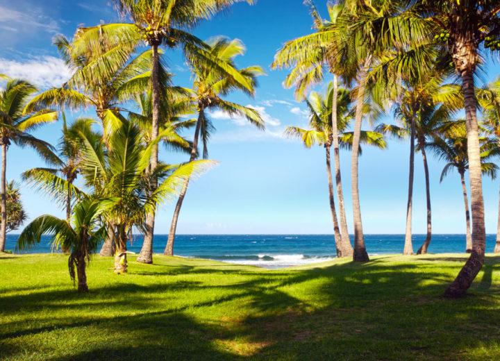 La Plage à voir absolument à l'île de La Réunion
