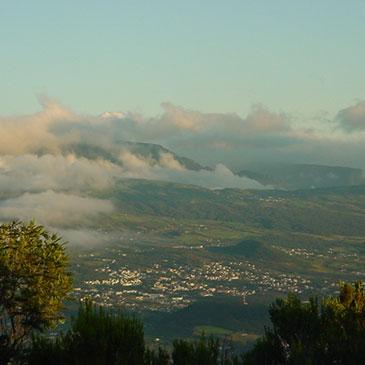 Dimitile à l'entre-deux île de La Réunion