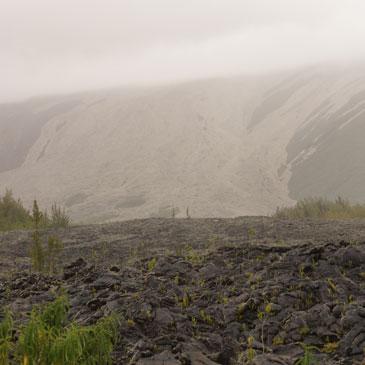Coulées de lave à l'île de La Réunion